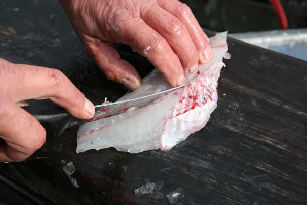 how to gut and clean a fish