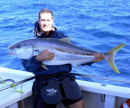 how to cook kingfish nz