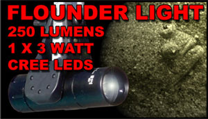 One flounder light on a telescopic handle